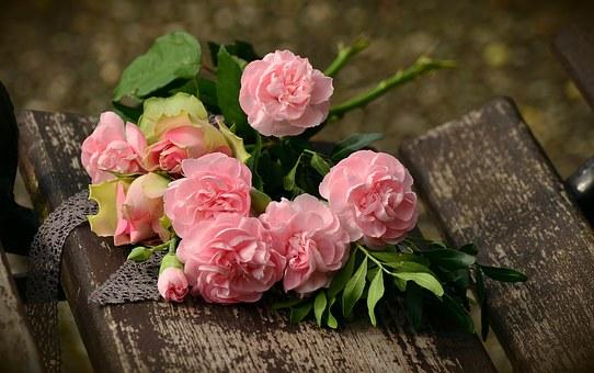 情人节送花常识:9种花语必须知道